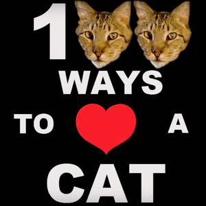 Die besten Impro-Comedy-Podcasts (2019): 100 Ways to Love A Cat