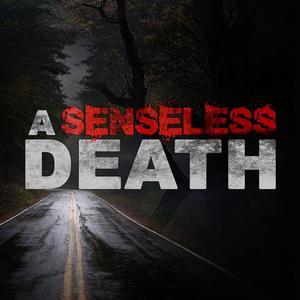 A Senseless Death