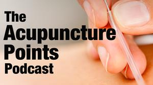 Best Alternative Health Podcasts (2019): Acupuncture Points and their Clinical Application