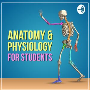 Anatomy & Physiology For Students