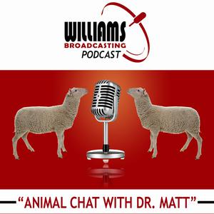 Animal Chat with Dr. Matt