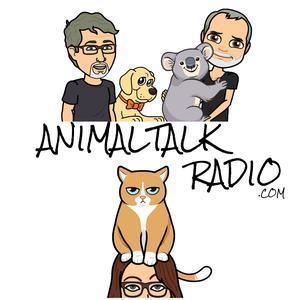 Animal Talk Radio