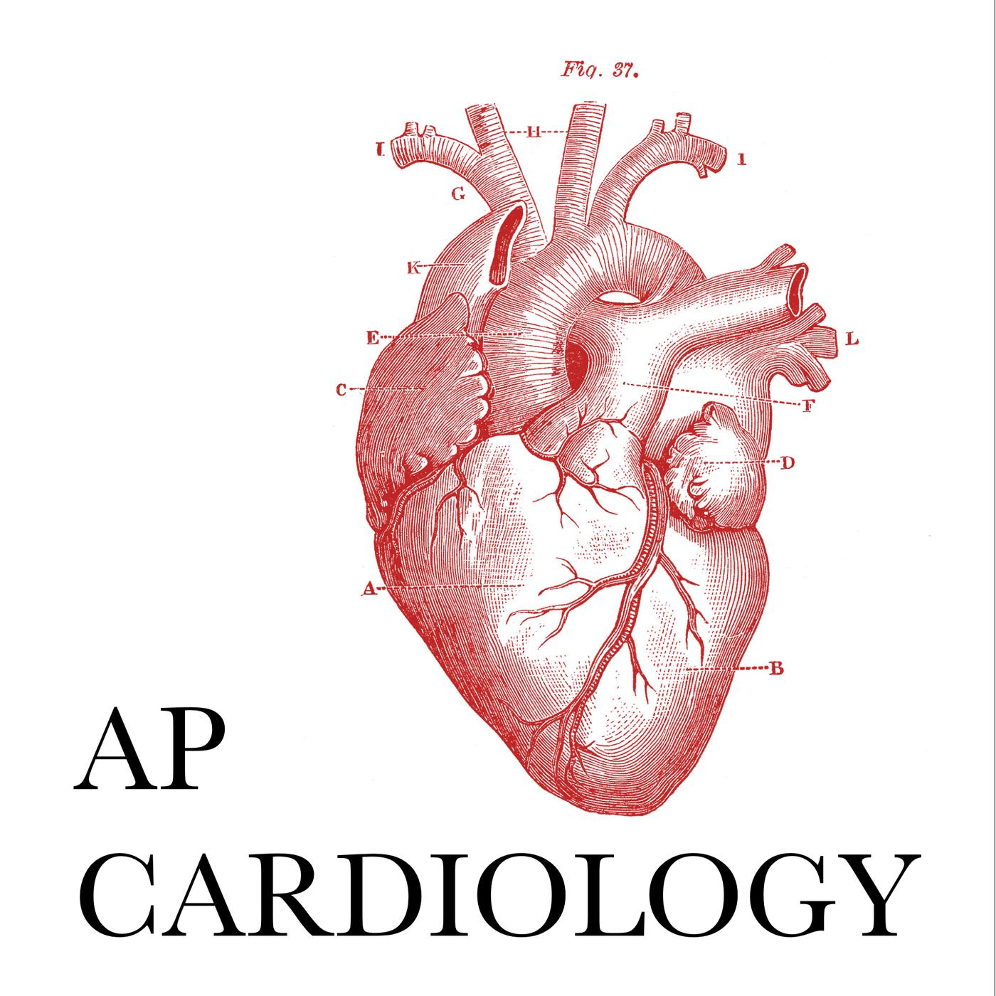 AP Cardiology (podcast) - Andrew Perry | Listen Notes