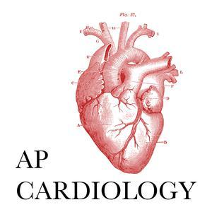 Best Medicine Podcasts (2019): AP Cardiology