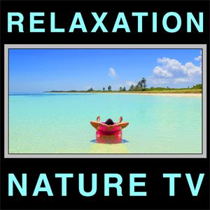 PIANO MUSIC #1 Relaxing Classical Instrumental Solo Songs