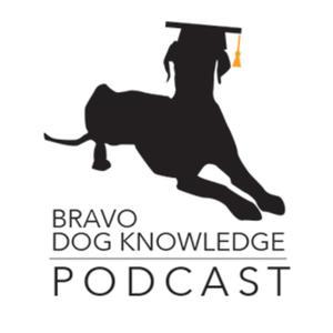 Best Training Podcasts (2019): Bravo Dog Knowledge: Dog Training Podcast