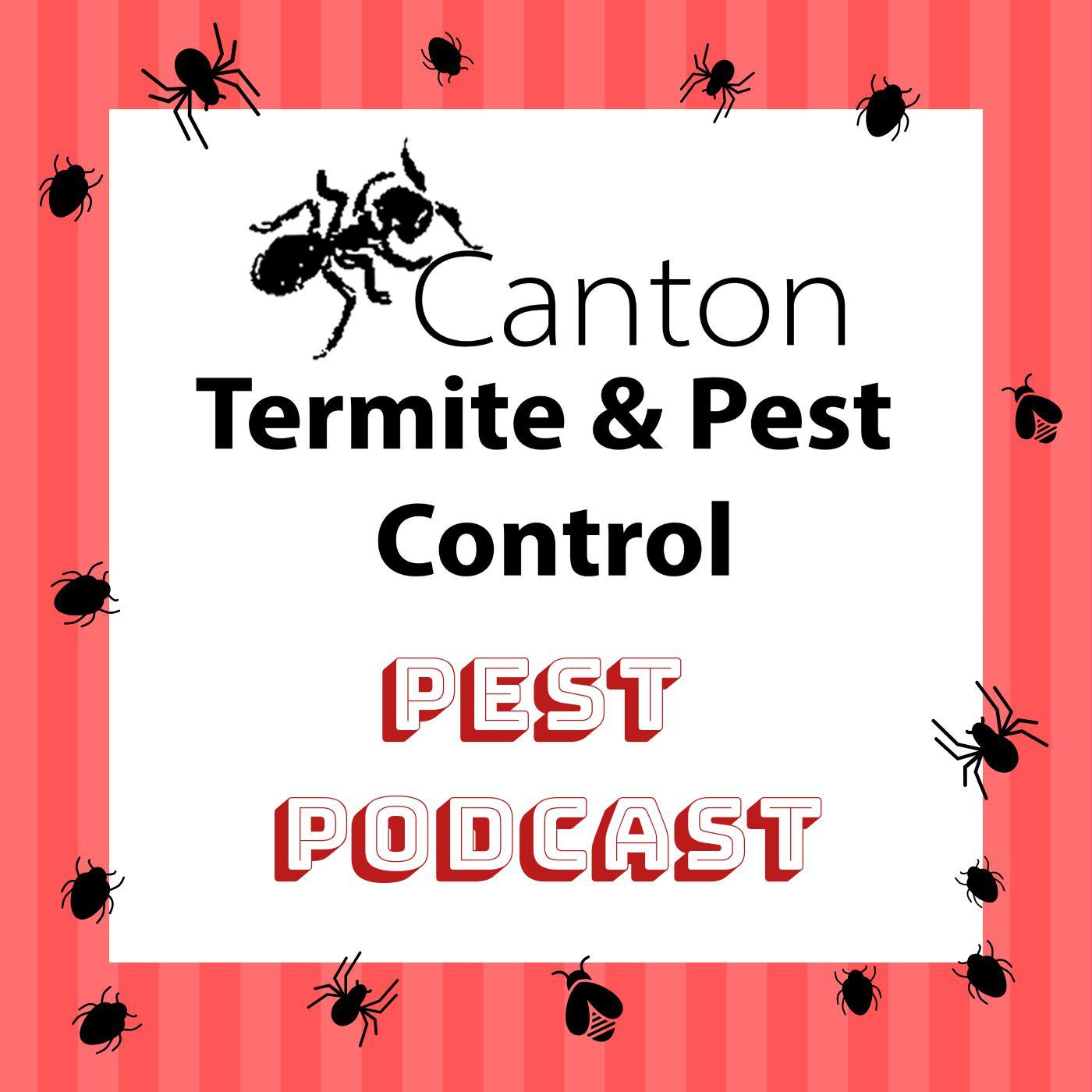 Canton Termite And Pest Control Podcast Canton Termite And Pest Control Podcast Listen Notes