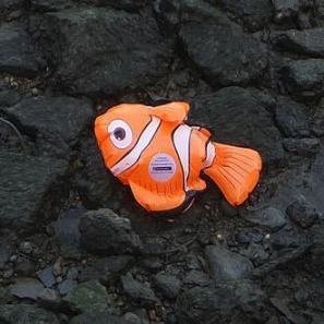 83: Emma Kelly's Fish Died! - Classic Kidd Kraddick