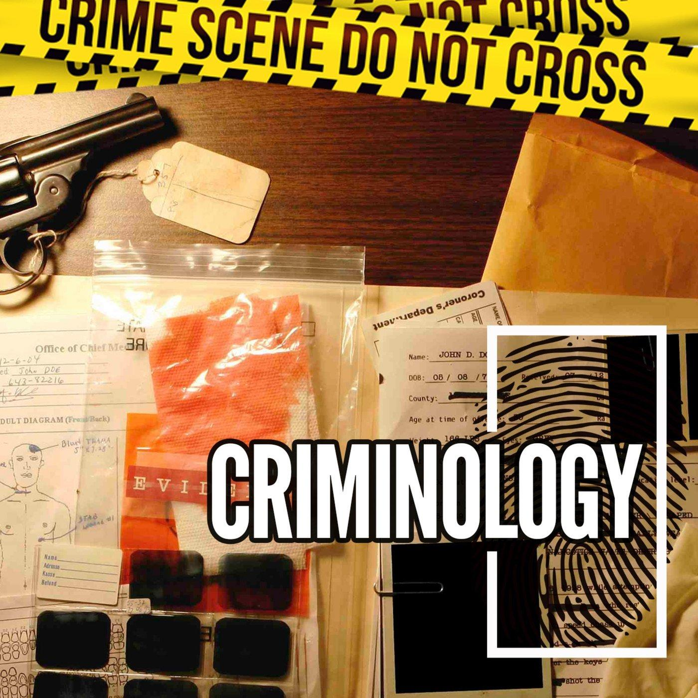 The Murders of David and Bobby Phillips - Criminology