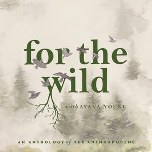 Die besten Wissenschaft-Podcasts (2019): For The Wild