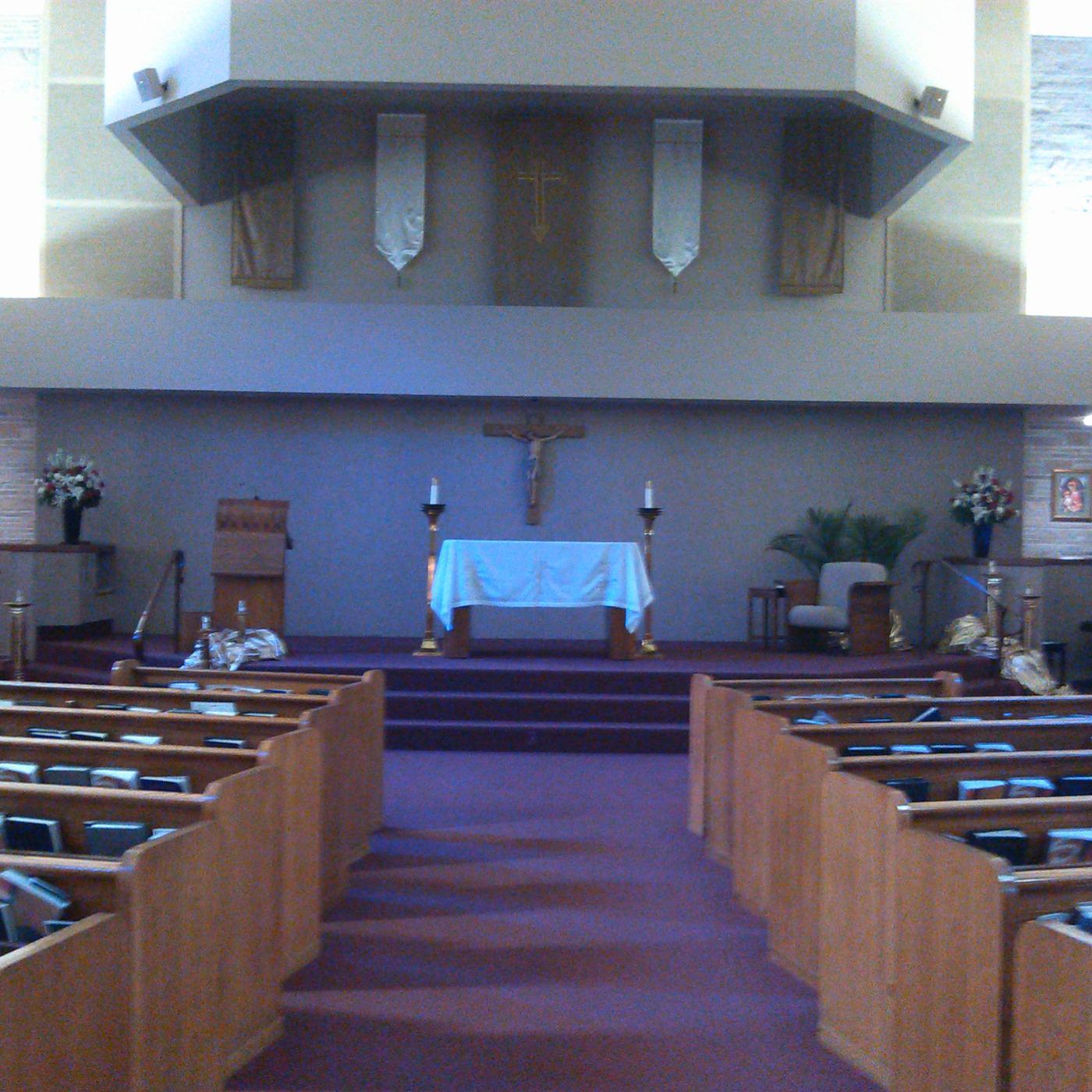 Fr  Bryan Ochs' Weekly Homily (podcast) - St  Rose Catholic