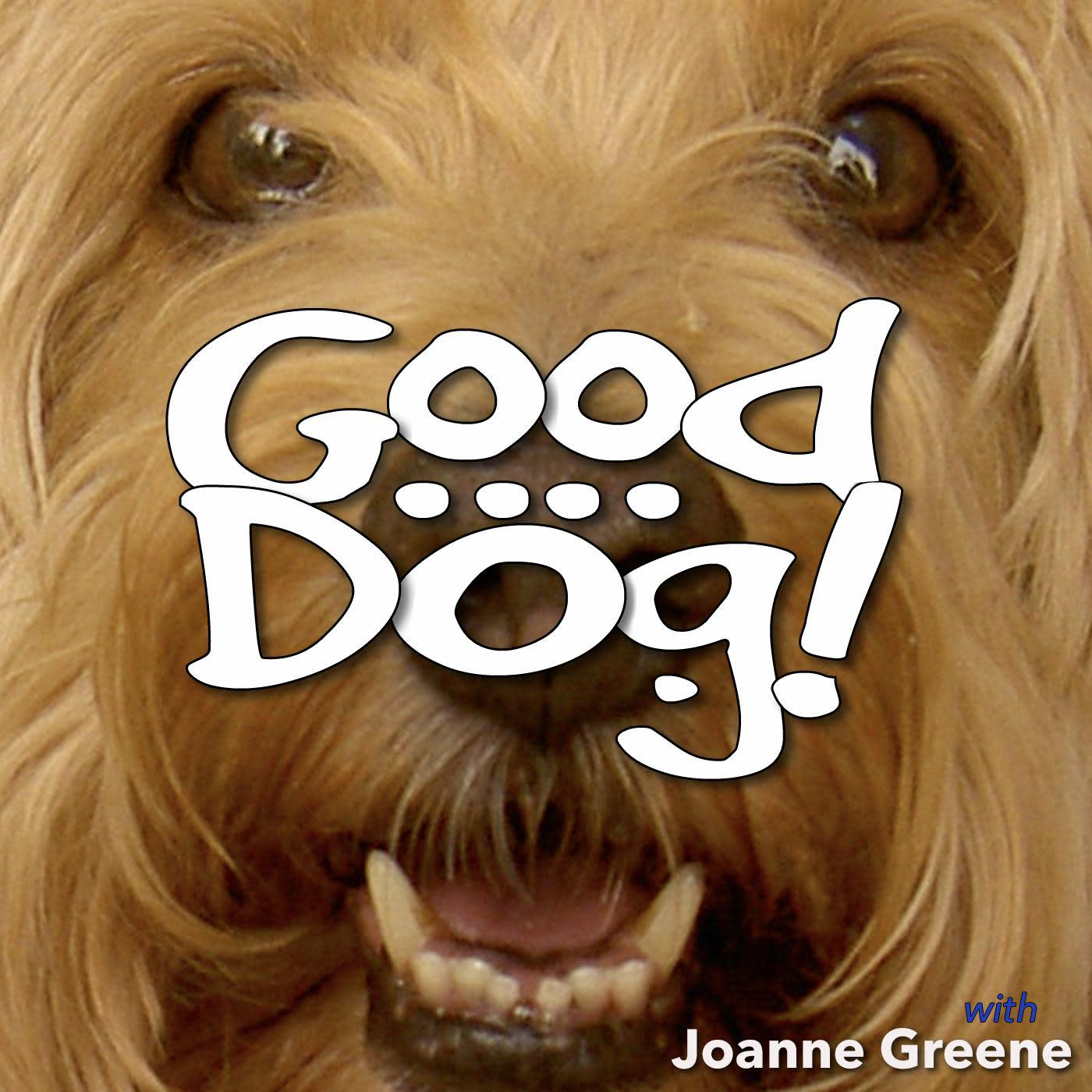 Good Dog! (podcast) - Fred Greene | Listen Notes