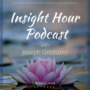 Insight Hour with Joseph Goldstein