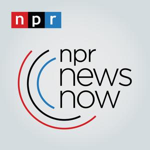 Best Daily News Podcasts (2019): NPR News Now