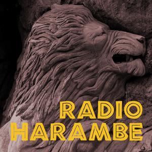 Radio Harambe
