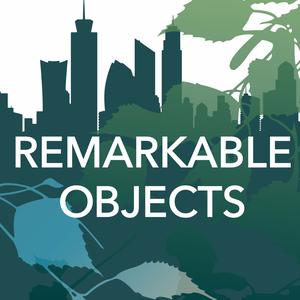 Remarkable Objects
