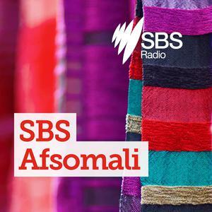 SBS Somali - SBS Afsomali