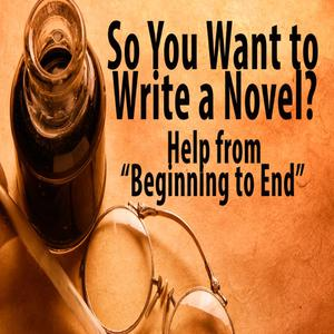So You Want to Write a Novel - Daily instruction