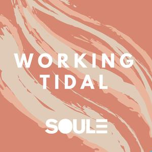 SOULE Presents: Working Tidal