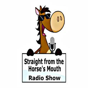 Straight From the Horse's Mouth Radio Show|Horse Radio|Horse Podcast|Creative Equestrians|Equestrian Mindset Coaches|Equine Artists/Authors|Horse Business Entrepreneurs|