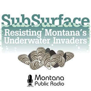 SubSurface: Resisting Montana's Underwater Invaders