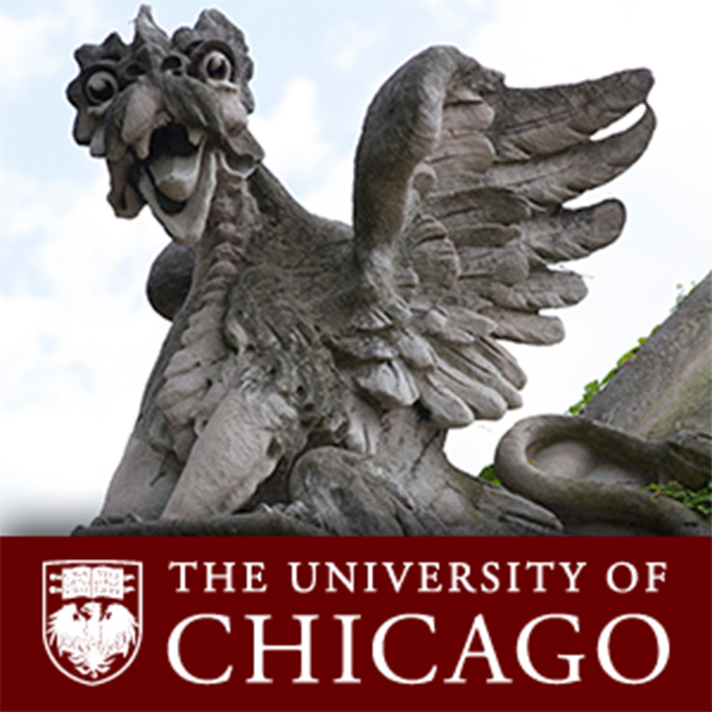 Taking The Next Step Audio Podcast The University Of Chicago Listen Notes