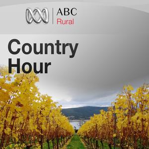 Tasmanian Country Hour