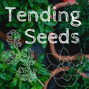 Best Personal Journals Podcasts (2019): Tending Seeds: Adventures in Homesteading and Herbalism