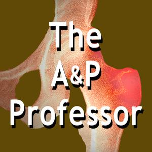 The A&P Professor