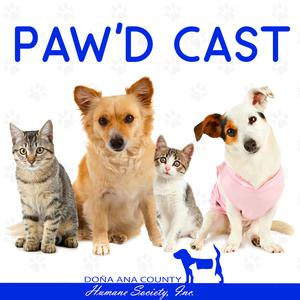 Best Local Podcasts (2019): The DACHS Paw'd Cast