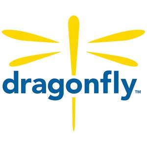Best Non-Profit Podcasts (2019): The Dragonfly Effect Podcast