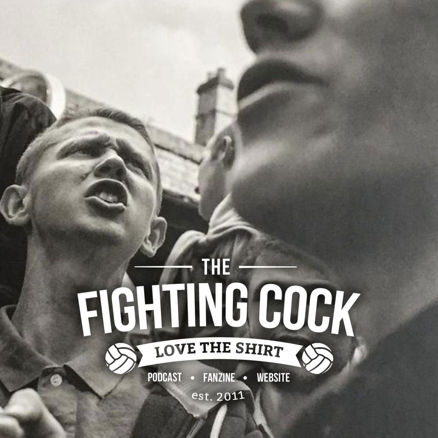 The fighting cock