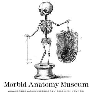 The Morbid Anatomy Transmission