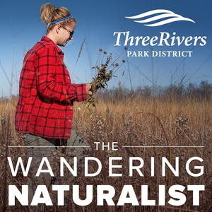 The Wandering Naturalist