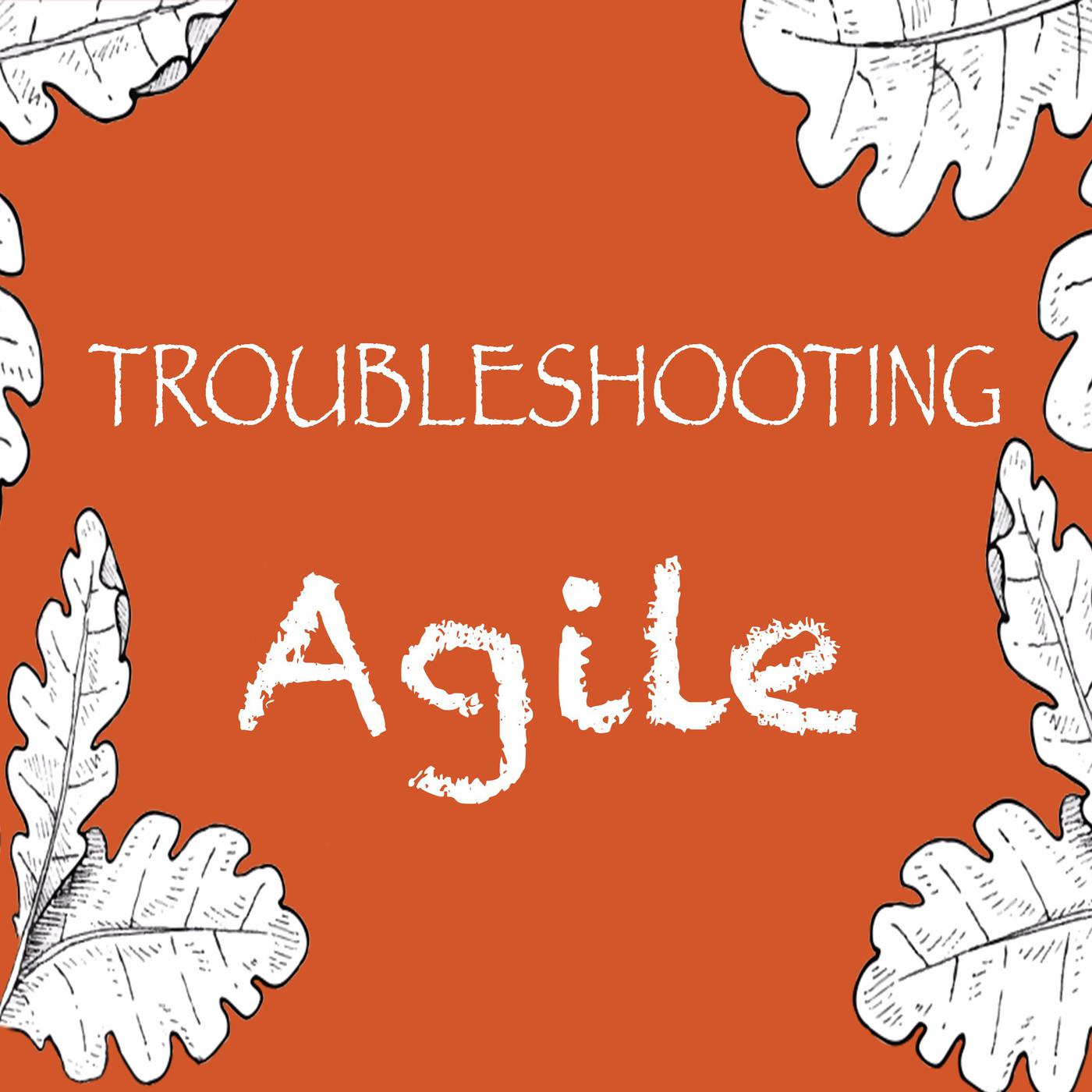 How to Detect Agile BS - Part 2 - Troubleshooting Agile