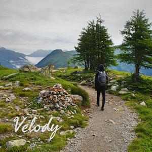 Velody: Wisdom Wandering