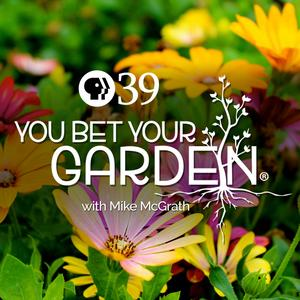 Best Podcasting Podcasts (2019): You Bet Your Garden